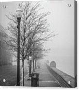 A Foggy Walkway Acrylic Print