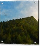 A Forested Dune... Acrylic Print