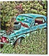 A Forgotten Mustang Acrylic Print