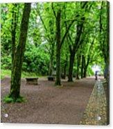 A Freiburg Germany Park Acrylic Print