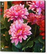 A Fresh Bouquet Acrylic Print