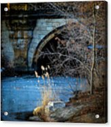 A Frozen Corner In Central Park Acrylic Print by Chris Lord