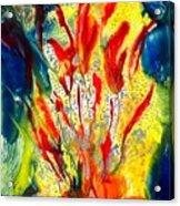 A Gateway To Americo Healing Acrylic Print