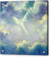 A Gift From Heaven Acrylic Print