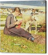 A Girl Knitting Acrylic Print by Giovanni Segantini
