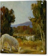 A Great Pyrenees With A Lamb Acrylic Print
