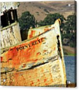 A-ground At Point Reyes Acrylic Print