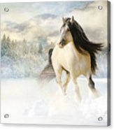 A Gypsy Winter Journey Acrylic Print