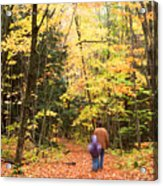 A Hike Into The Forest Acrylic Print