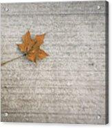 A Hint Of Autumn Acrylic Print