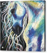 A Horse In My Keeping ... Acrylic Print