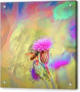 A Hoverfly On Abstract #h3 Acrylic Print