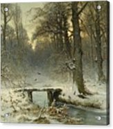 A January Evening In The Woods Acrylic Print