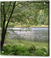 A Lake Near Glendalough Acrylic Print