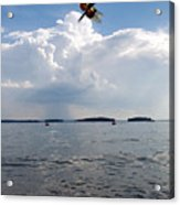A Leap To Freedom Acrylic Print