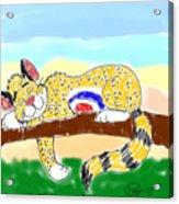 A Leopard In Slumber Acrylic Print