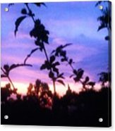 A Lighter Side Of A Sunset Acrylic Print