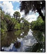 a little bit of Florida Acrylic Print