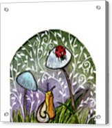 A Little Chat-ladybug And Snail Acrylic Print