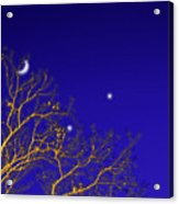 A Little Night Magic Acrylic Print by Wendy J St Christopher