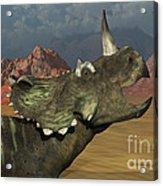 A Lone Centrosaurus Dinosaur Calling Acrylic Print