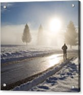 A Lonely Winter Acrylic Print