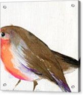 A Magical Little Robin Called Wisp Acrylic Print