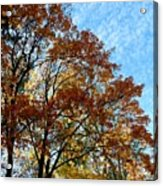 A Magnificent Fall Day Acrylic Print