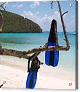 A Maho Bay Snorkel Acrylic Print by Richard Mansfield