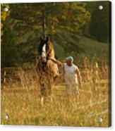 A Man And His Horse Acrylic Print by Terry Kirkland Cook