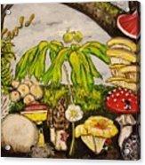 A Mushroom Story Acrylic Print