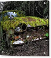 A Non Rolling Car Gathers Some Moss Acrylic Print
