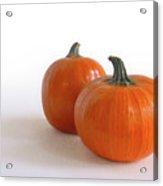A Pair Of Pumpkins Acrylic Print