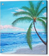 A Palm At Sunrise Acrylic Print