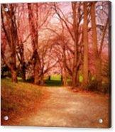 A Path To Fantasy - Holmdel Park Acrylic Print