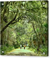 A Peaceful Walk Acrylic Print