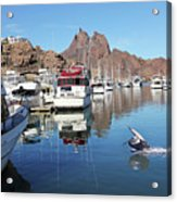 A Pelican Lands In The Old San Carlos Marina, Guaymas, Sonora, M Acrylic Print