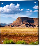 A Perfect Day Out West Acrylic Print