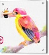 A Pink Rainbow Acrylic Print