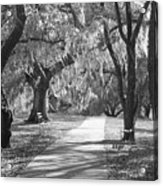A Place For Contemplation - Black And White Acrylic Print