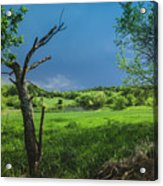 A Pond Just Outside Of Imre... Acrylic Print