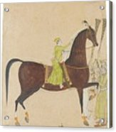 A Portrait Of The Royal Stallion Acrylic Print