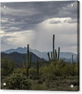 A Rainy Desert Afternoon  Acrylic Print