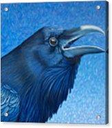 A Raven's Prayer Acrylic Print