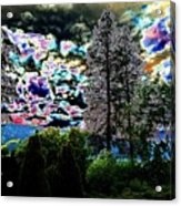 A Razzle Dazzle Sky Acrylic Print
