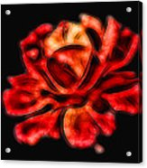 A Red Rose For You 2 Acrylic Print by Mariola Bitner