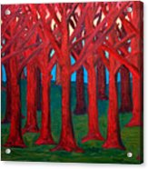 A Red Wood - Sold Acrylic Print