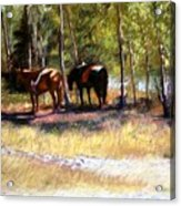 A Rest By The River Acrylic Print