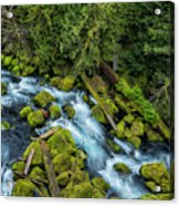 A River's Path Acrylic Print
