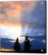 A Riveting Sky Acrylic Print